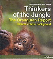 Thinkers of the Jungle: The Orangutan Report